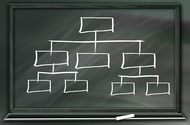 Organisatiestructuur voorbeeld