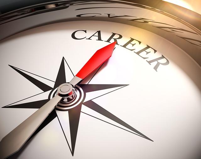 leiderschap carrière